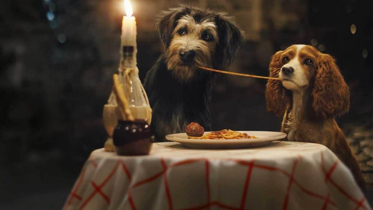 Susi und Strolch beim Spaghetti essen.