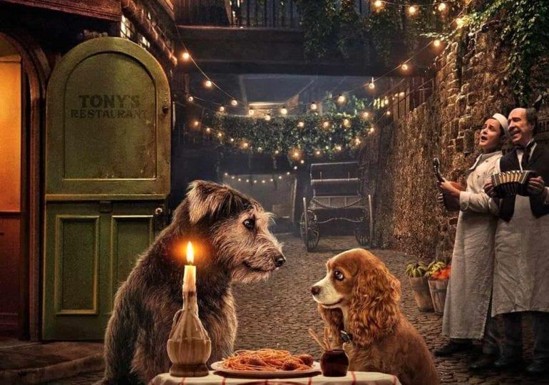 """""""Susi und Strolch""""   Film Kritik   Disney+   2020"""