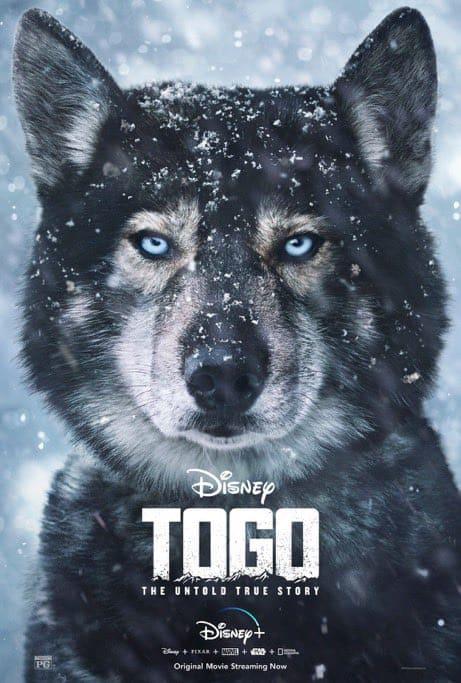 """Togo"" | Film Kritik | Disney+ | 2020"
