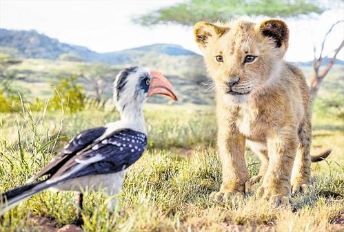 Der König der Löwen 2 kommt