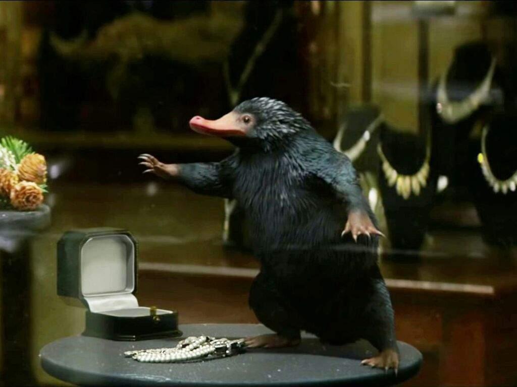 """Der """"Niffler"""" aus """"Phantastische Tierwesen Und Wo Sie Zu Finden Sind"""" ©Warner Bros. Entertainment"""